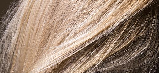 Friseur-Lemgo-Colorationen